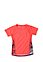 PUMA - Funktions-T-Shirt Active Dry, Rundhals